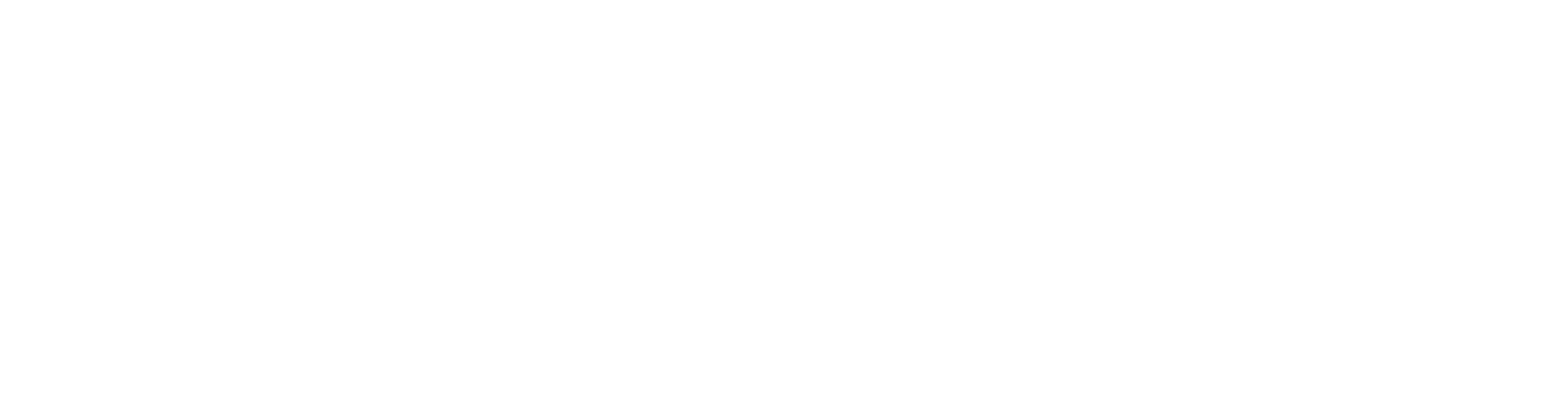 Blum-logo-2019